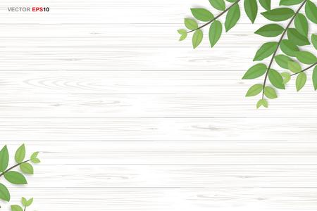 Fond de texture bois avec des feuilles vertes. Illustration vectorielle réaliste. Vecteurs