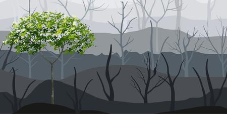 Fondo de árbol verde y niebla forestal. Ilustración vectorial. Ilustración de vector