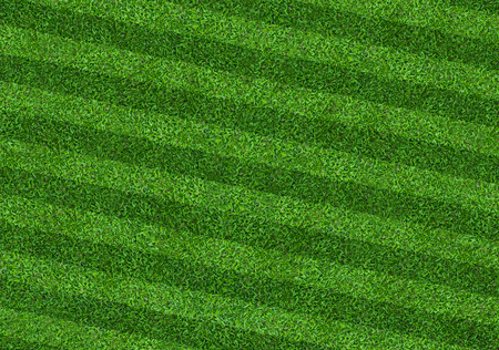 Green grass field background for soccer and football sports. Green lawn pattern and texture background. Close-up image.