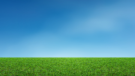 Landscape of grass field and green environment park use as natural background. Field of green grass and blue sky. Stock Photo
