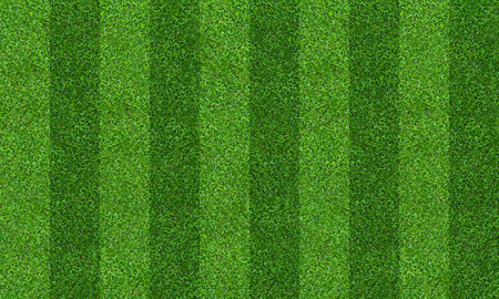 Green grass field background for soccer and football sports. Green lawn pattern and texture background. Close-up image. Archivio Fotografico