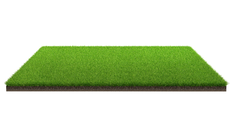3d rendering of green grass field isolated on a white background with clipping path. Sports field. Exercise and recreation place.