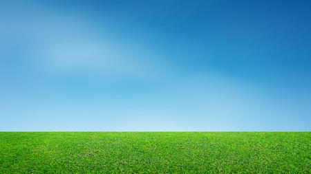 Landschaft mit Rasenfläche und grünem Umweltpark als natürlicher Hintergrund. Feld des grünen Grases und des blauen Himmels. Standard-Bild