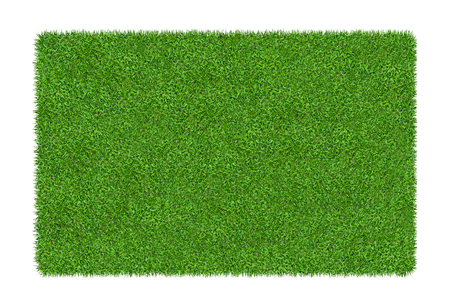 3D render of green grass. Natural texture background. Fresh spring green grass. isolated on white background with clipping path.