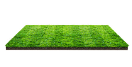 Green grass field isolated on white with clipping path. Sports field. Summer team games. Exercise and recreation place.