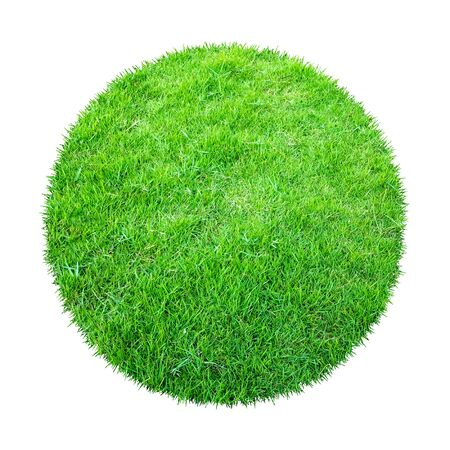 Abstract green grass texture for background. Circle green grass pattern isolated on a white background with clipping path. Banque d'images - 129132361