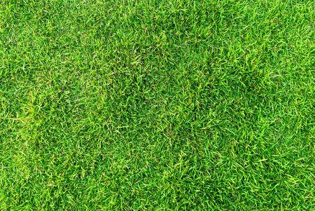 Artificial green grass background. Green grass floor texture ideal for use top view sport background.