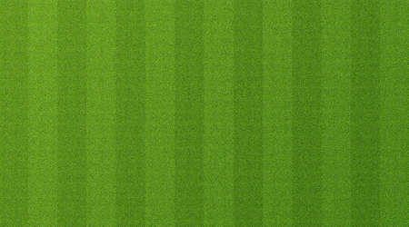Green grass texture for sport background. Detailed pattern of green soccer field or football field grass lawn texture. Green lawn texture background. Close-up. Foto de archivo - 151339963