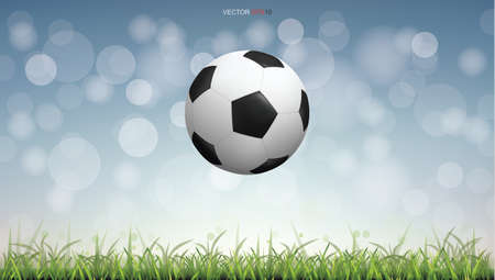 Soccer football ball on green grass field with light blurred bokeh background. Vector illustration. Foto de archivo - 155876057