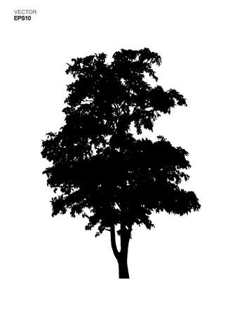 Silhouette tree isolated on white background. Park and outdoor object idea use for landscape design, architectural decorative. Vector illustration.