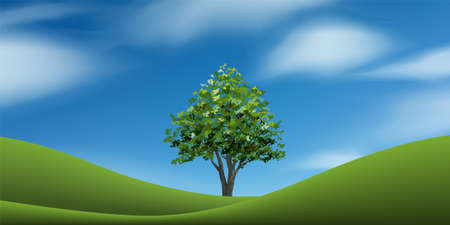 Tree with green grass hill or mountain area and blue sky. Abstract background park and outdoor for landscape design idea. Vector illustration.