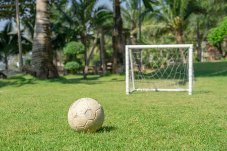 Soccer ball in grass field in front of the goal post. Football ball on green grass of playground. Stockfoto - 163489243