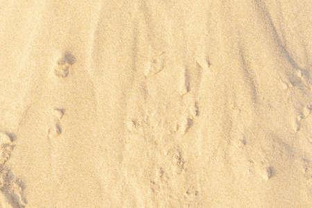 Sand on the beach as background. Light beige sea sand texture pattern, sandy beach texture background. Stockfoto