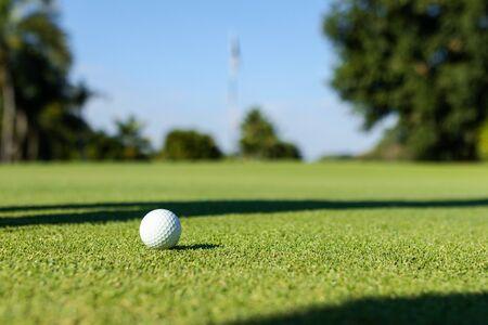 Nahaufnahme von Golfball auf dem Rasen. Standard-Bild