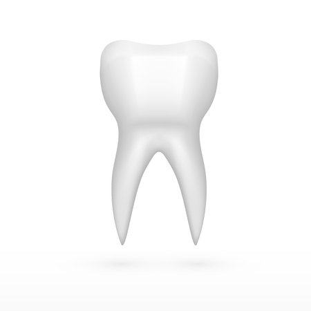 Clear One White Molar Tooth With Shadow isolated on plain background. Ilustração