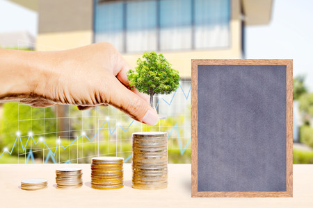 ministry: Business finance and real estate concepts, Hand stacking coins with tree growing, Chalkboard free space for you planing, Business graph and blurred home garden background.