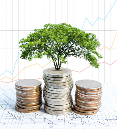 Double exposure coins and big green plant growing, Graph background, Saving money, Economy, Investment and Saving Concept.