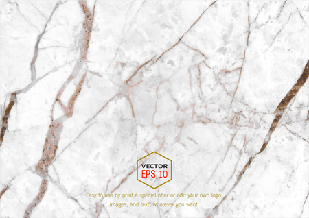 granite counter: Abstract white marble texture, Vector pattern background, Trendy template inspiration for your design. Illustration