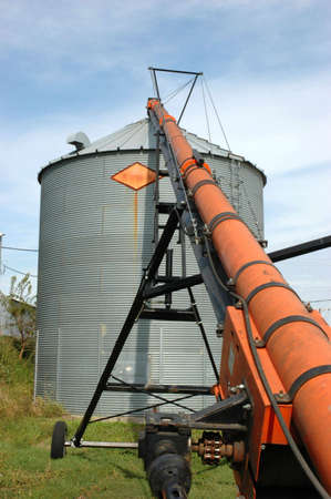 Auger and Grain Bin During Harvest   photo