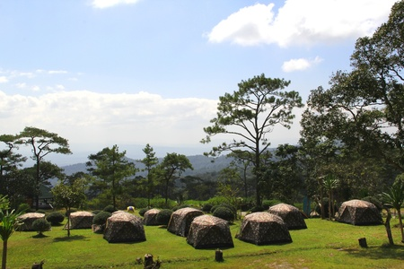 mountain camping at phu rua national park in loei,thailand
