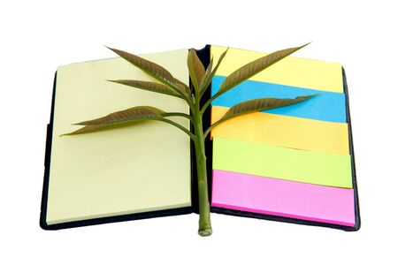 Concept picture of recycle note pad for save environment Stock Photo - 12580512