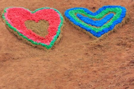 symbol of love - colour full heart on soil  background photo
