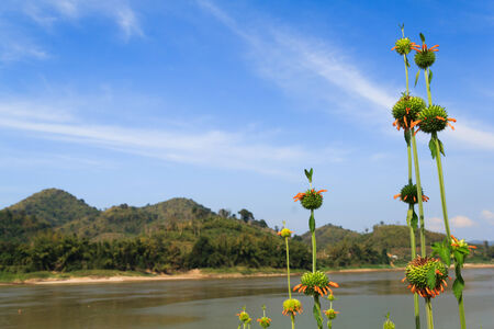 Scenery on the Mekong River  , Loei Province  Grand canyon in Thailand photo