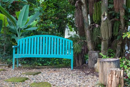 perennials: wood bench with shade garden with perennials in park Stock Photo