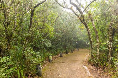Nature trails in Phu Luang Wildlife Sanctuary Stock Photo