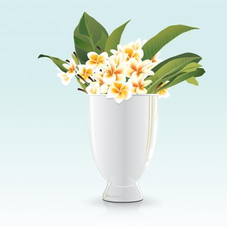 Frangipani in white glay