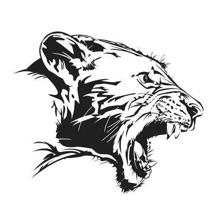 feral:  illustration present tiger feral