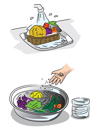 Show how to clean fruits and vegetables without pesticides and residues in plants.