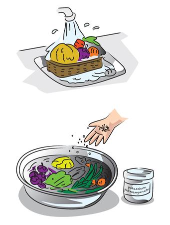 Toon hoe u groenten en fruit kunt schoonmaken zonder pesticiden en residuen in planten.