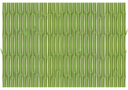 Bamboo panel backdrop for background design.