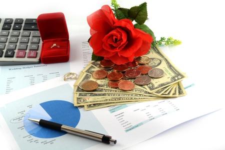 Bruiloft budget sheet Stockfoto - 22272588