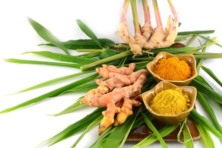 Turmeric roots and powder Imagens - 22602633
