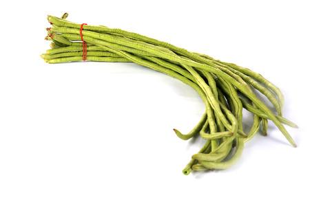 long bean: yard long bean isolated