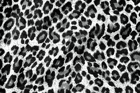 animal sexy: The fabric of motifs leopard on background  Stock Photo