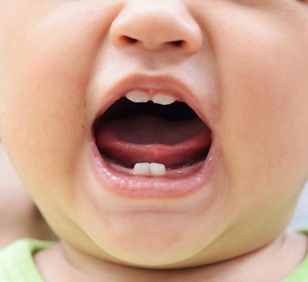 赤ちゃんの歯のクローズ アップ