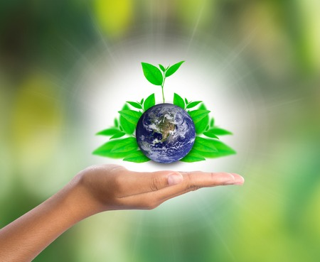 equitable: Earth on hand with green leaf, Stock Photo