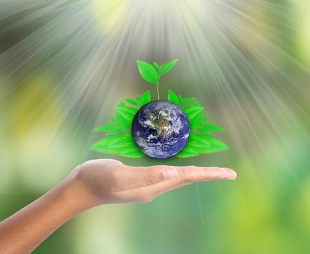 leaf shape: Earth on hand with green leaf