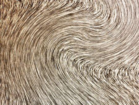 hay: hay bales Stock Photo