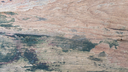 wood plank sheet texture on top view. concept for background
