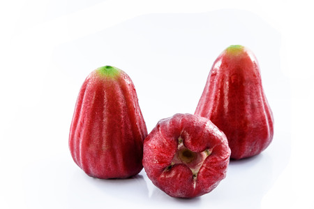 rose apple photo