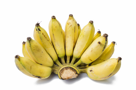 wa banana on a white background photo