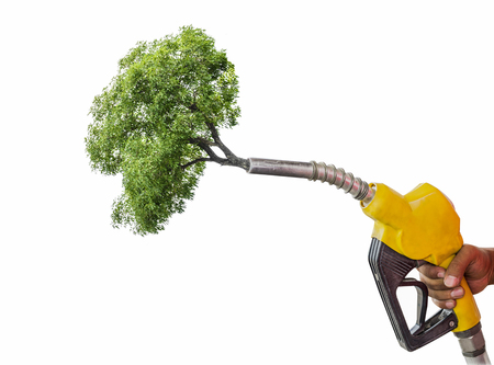 Green energy concept,Holding a fuel nozzle against tree white background.