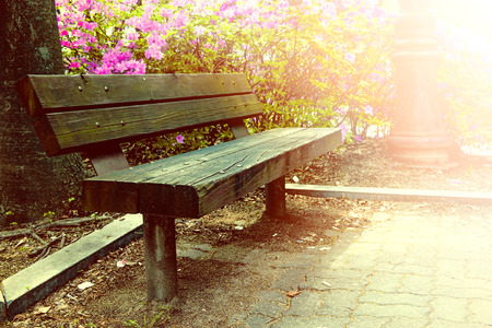 wooden bench: Wooden bench in park with vintage color.