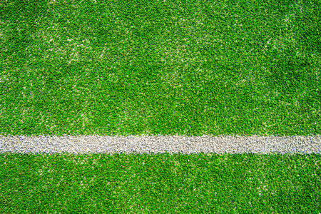 cut grass: green soccer field. Stock Photo