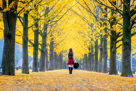 Beautiful Girl with Yellow Leaves in Nami Island, Korea Zdjęcie Seryjne