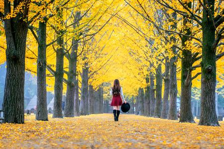 Beautiful Girl with Yellow Leaves in Nami Island, Korea Standard-Bild